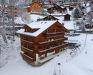 Apartment Roossihuus, Wengen, picture_season_alt_winter