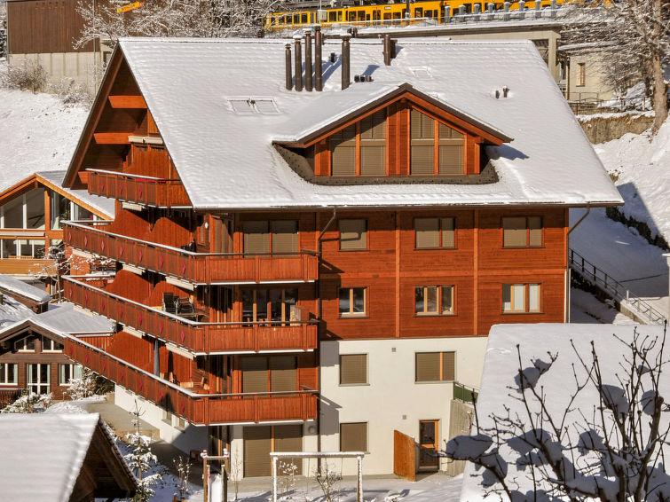 Bella Vista - Apartment - Wengen