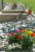 Bild 15 Aussenansicht - Ferienwohnung Amici, Saas-Grund