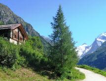 Вилла в Zermatt - CH3958.15.1