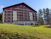 Crans-Montana - Apartamenty Europa