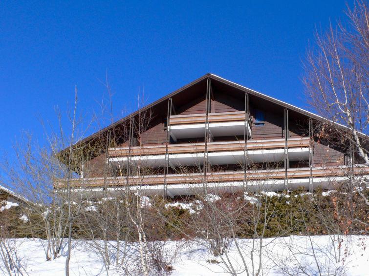 Ferielejlighed til langrend og tæt på skiområdet