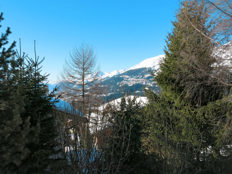 Chalet Bouton d'Or (CSK360)