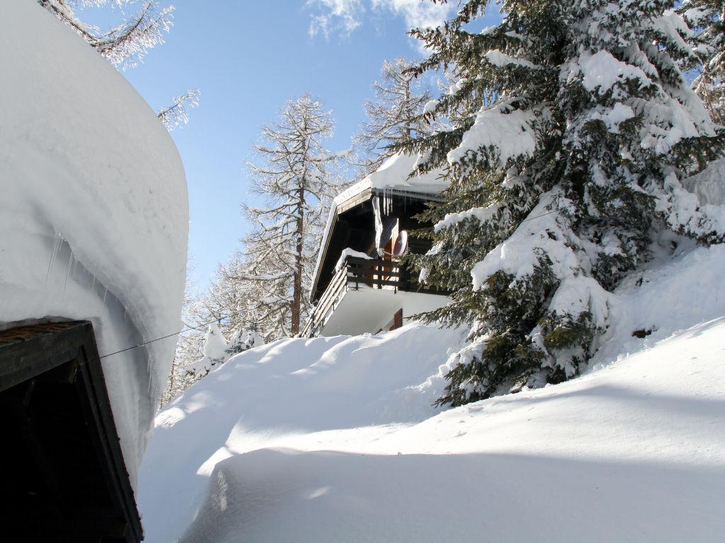 Ferienhaus Soldanella (BEL205) (105799), Bellwald, Aletsch - Goms, Wallis, Schweiz, Bild 15
