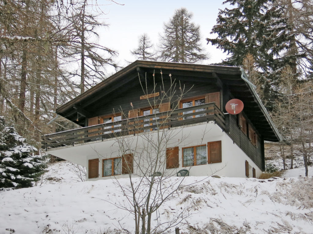 Ferienhaus Soldanella (BEL205) (105799), Bellwald, Aletsch - Goms, Wallis, Schweiz, Bild 16