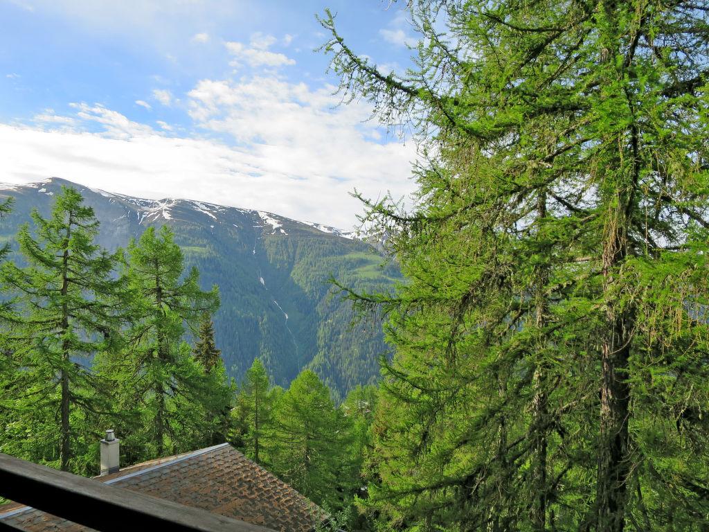 Maison de vacances Soldanella (BEL205) (105799), Bellwald, Aletsch - Conches, Valais, Suisse, image 7