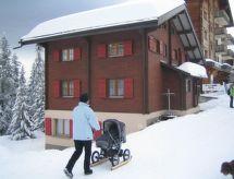 Riederalp - Apartment Imhof 2.Stock