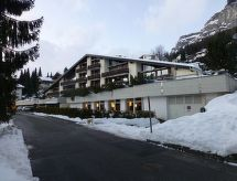 Flims - Apartment CAGLIEMS 216 / Flasch