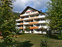 Laax - Appartement Val Signina