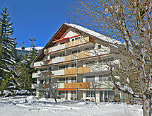 Appartement Val Signina, Laax, Winter
