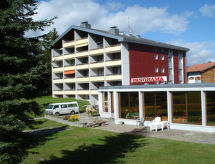 Obersaxen Affeier - Ferienwohnung Panorama Janka
