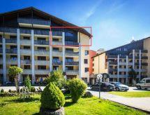 Disentis - Appartement Disentiserhof C404 Fischer
