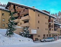 Silvaplana-Surlej - Appartement Chesa Munteratsch 311