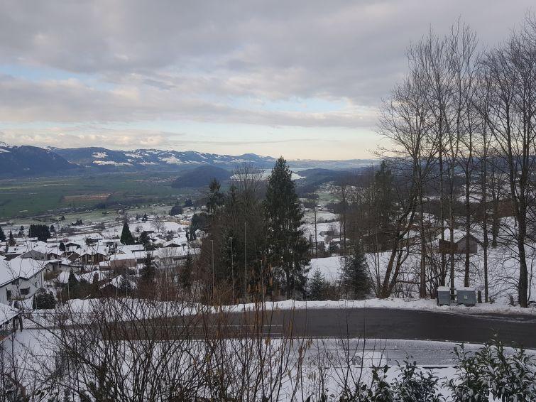 Ferienhaus Gommiswald - Chalet