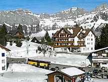 Tannenboden - Apartamenty Alpina