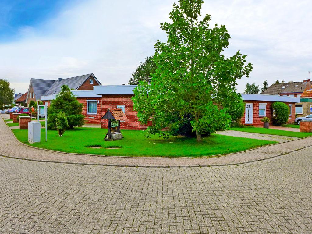 Ferienhaus Mondmuschel Ferienhaus  Norddeich