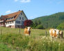 Bild 11 Aussenansicht - Ferienwohnung Freyenhöfe, Baiersbronn
