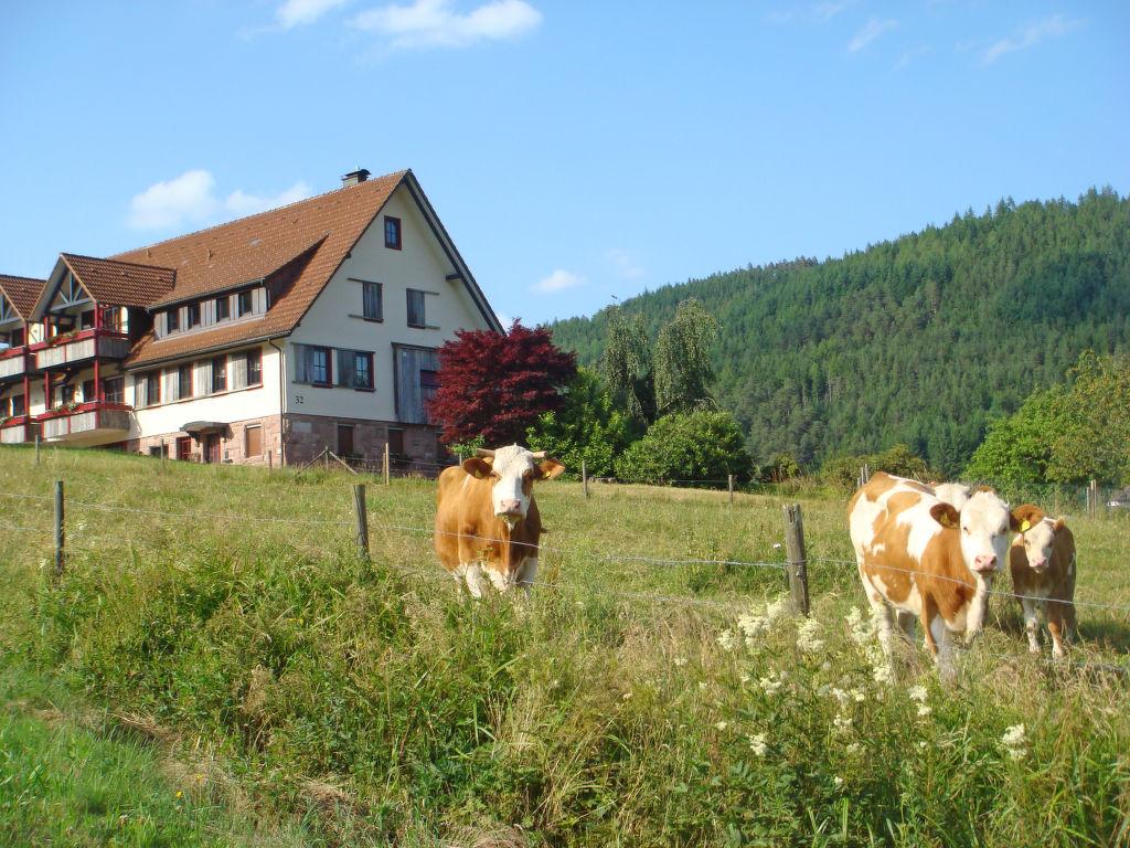 Ferienwohnung Freyenhöfe Ferienwohnung  Schwarzwald