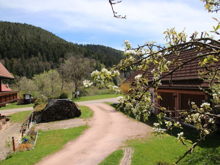 Backhäusle (APB100) - Chalet - Alpirsbach