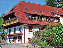 Schiltach - Appartement Biohof Herrenweg