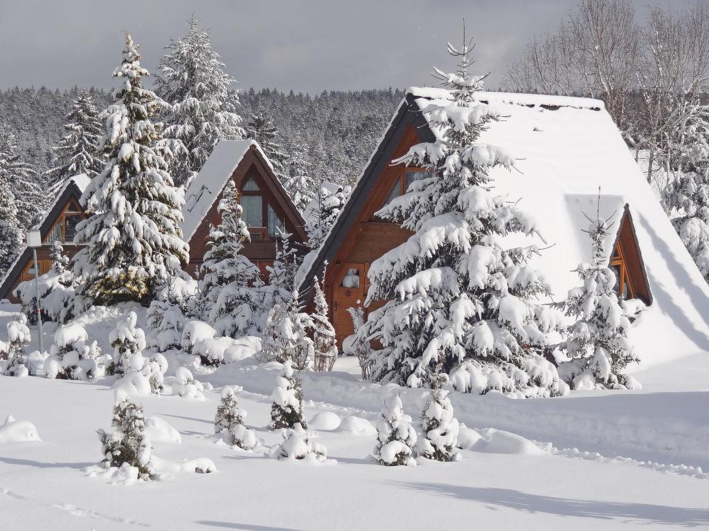 Ferienhaus Tennenbronn
