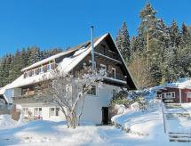 Hinterzarten - Appartamento Haus Ganter (HTZ160)