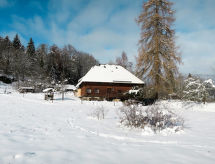 Hinterzarten - Maison de vacances Reihenhaus (HTZ170)