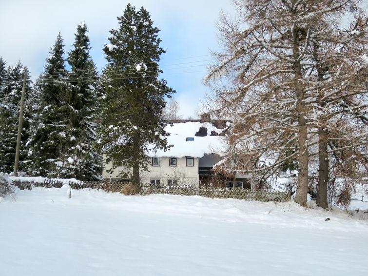 Blechnerhof (FBG211) - Apartment - Feldberg