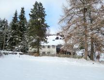 Feldberg - Appartement Blechnerhof (FBE211)