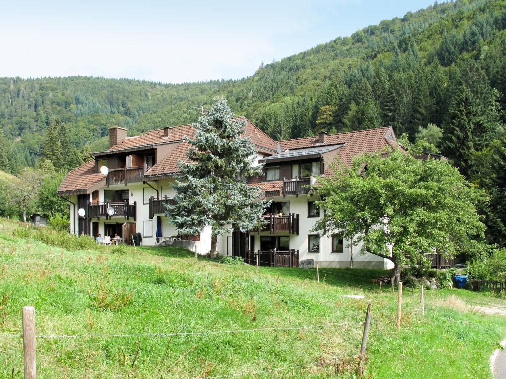 Ferienwohnung Sonnenblick (TON103) (114122), Todtnau, Schwarzwald, Baden-Württemberg, Deutschland, Bild 1