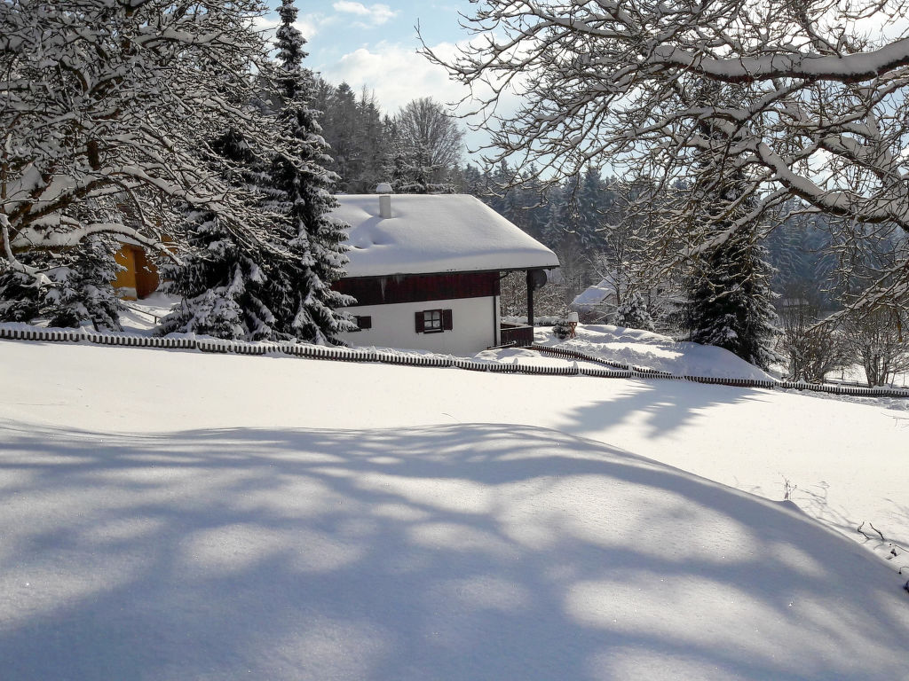 Holiday house Mühlberg (SPG101) (105822), Spiegelau, Bavarian Forest, Bavaria, Germany, picture 2