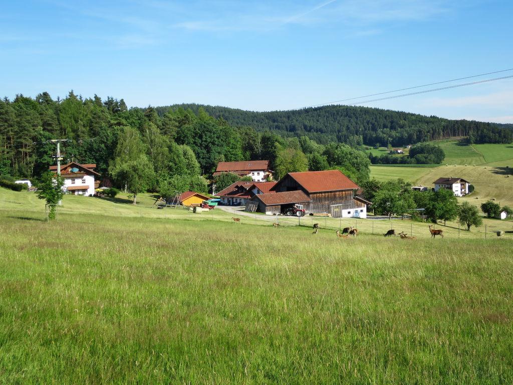 Ferienwohnung Ferienhof Wolf (VIE110) (696720), Viechtach, Bayerischer Wald, Bayern, Deutschland, Bild 7