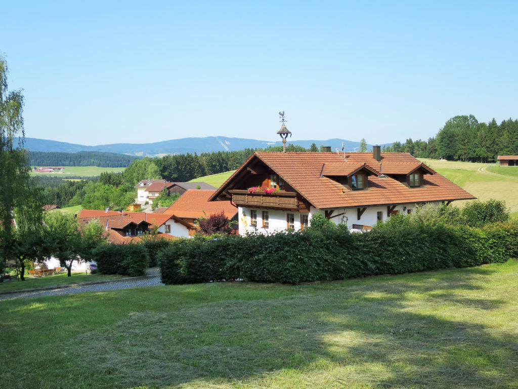Ferienwohnung Ferienhof Wolf (VIE110) (696720), Viechtach, Bayerischer Wald, Bayern, Deutschland, Bild 8