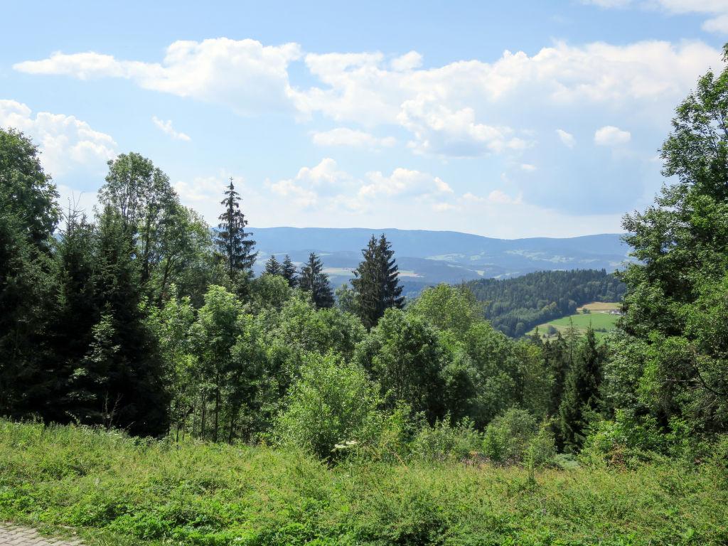 Ferienhaus Kreuzbuche (VIE105) (112575), Viechtach, Bayerischer Wald, Bayern, Deutschland, Bild 3