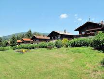 Arrach - Ferienhaus Feriendorf Am Hohen Bogen (ARH103)