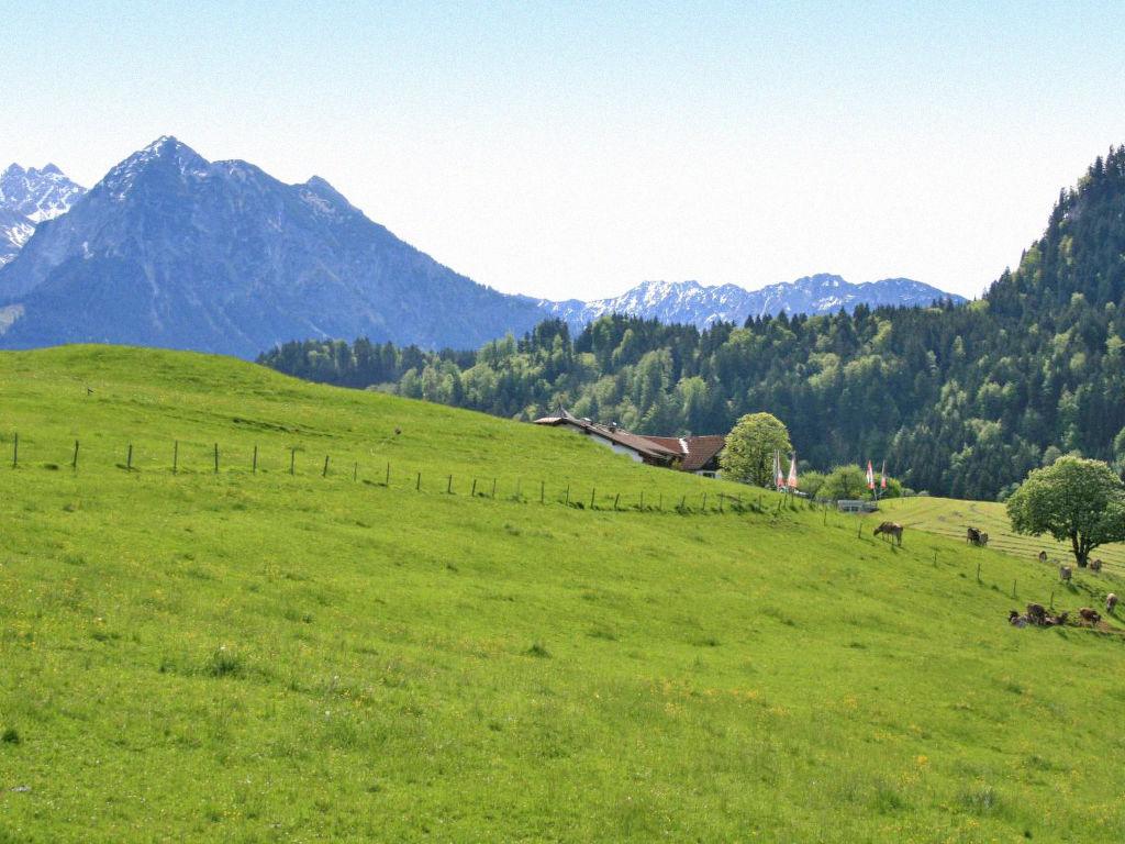 Ferienwohnung Charivari (OSN151) (109716), Obermaiselstein, Allgäu (Bayern), Bayern, Deutschland, Bild 10