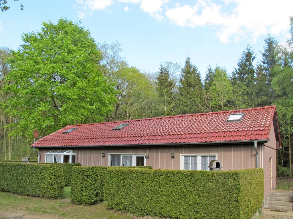 Ferienhaus Waldsiedlung (SWS101) (105619), Retgendorf, Mecklenburg-Schwerin, Mecklenburg-Vorpommern, Deutschland, Bild 1