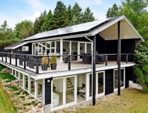 Brovst - Maison de vacances Tranum Strand