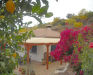 Picture 12 exterior - Holiday House Finca Trigueros - casa palmito, Rincón de la Victoria