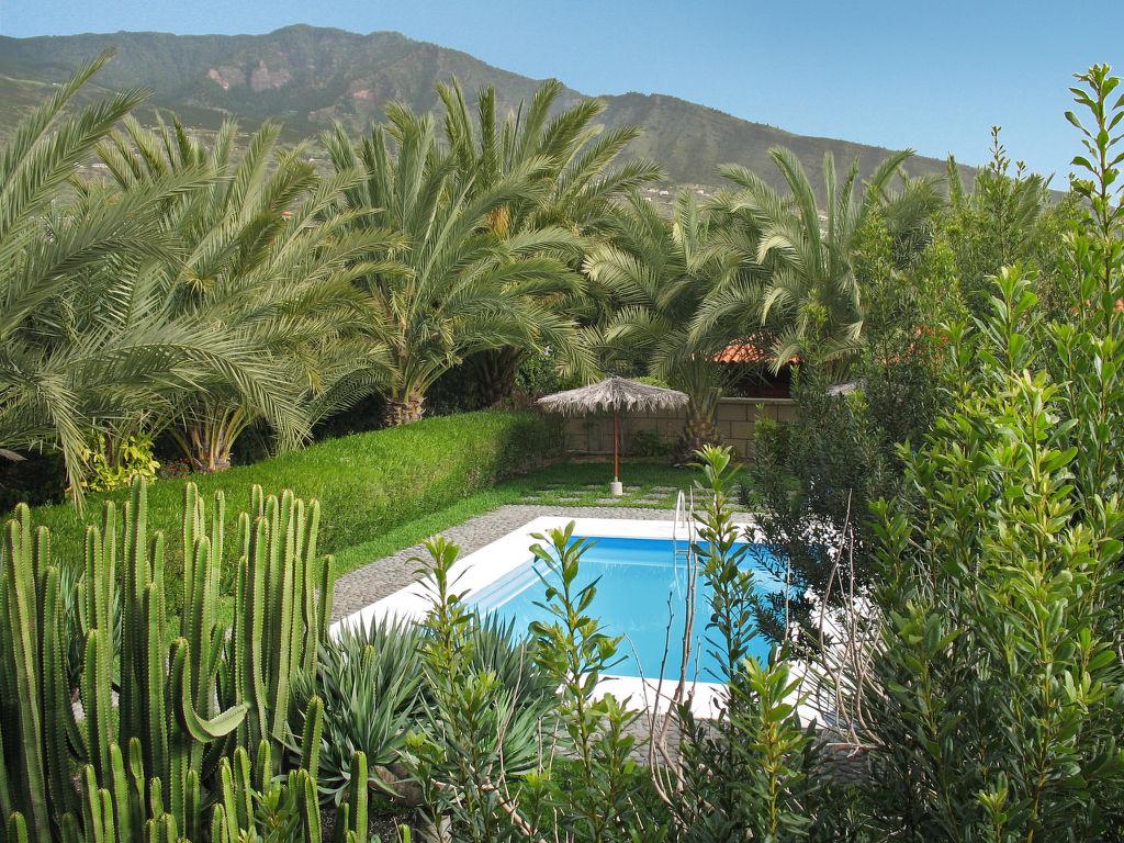Holiday house Arafo (ARF100) (109544), Güimar, Tenerife, Canary Islands, Spain, picture 6