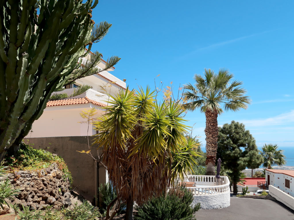 Appartement de vacances Cuevecitas (CND111) (419332), Candelaria (ES), Ténérife, Iles Canaries, Espagne, image 13