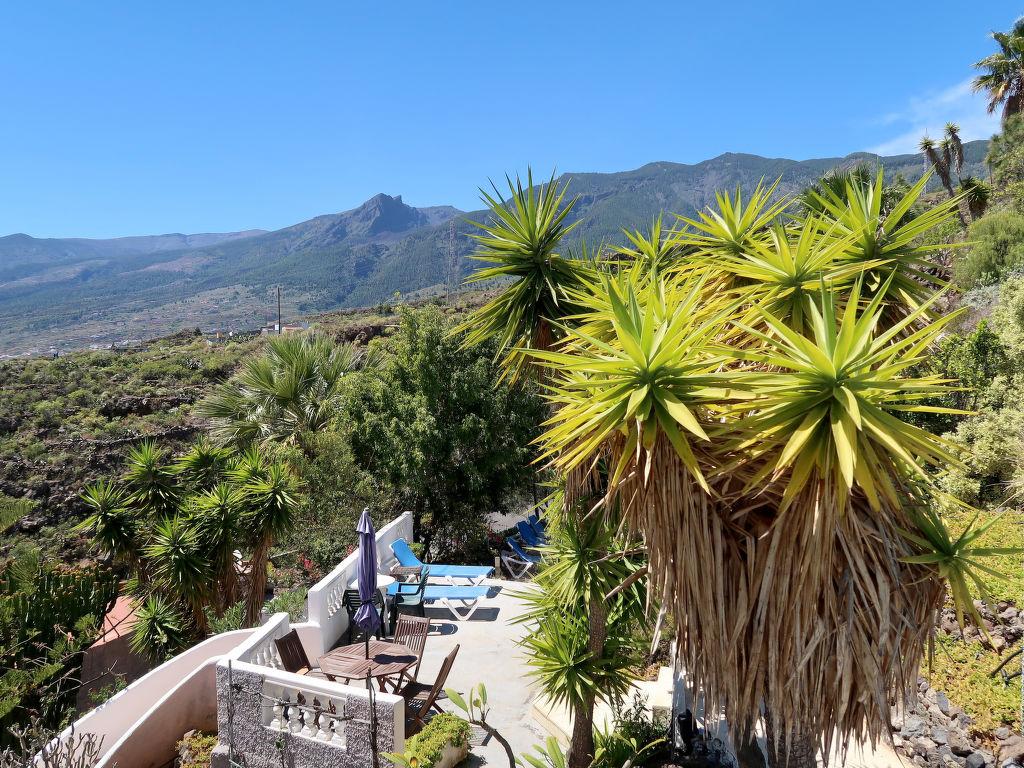 Appartement de vacances Cuevecitas (CND111) (419332), Candelaria (ES), Ténérife, Iles Canaries, Espagne, image 1