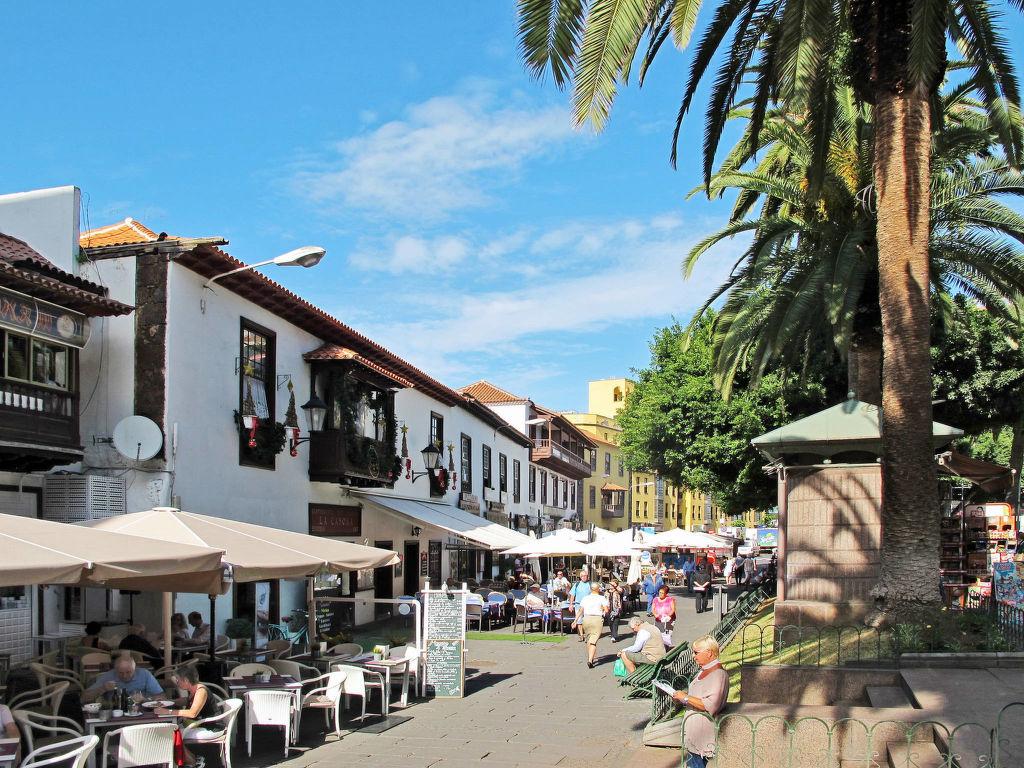 Appartement de vacances La Mancha (SUR117) (2452362), Santa Ursula, Ténérife, Iles Canaries, Espagne, image 12