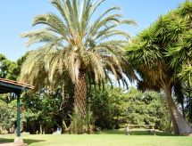 La Orotava - Casa Jardín Tropical