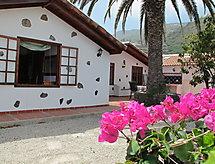 Icod de los Vinos - Casa Landhaus Icod in Bananenplantage 1