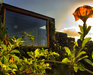 Holiday House Eco-Casa Bianca, Country Escape, Tinajo, picture_season_alt_winter