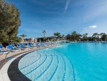 Tropical premium Tenis için ve Havuzlu