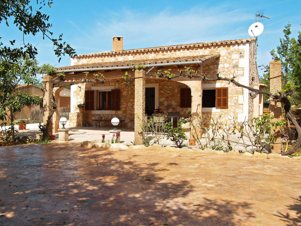 Maison de vacances Jacoba (PPE130) (106784), Portopetro, Majorque, Iles Baléares, Espagne, image 17