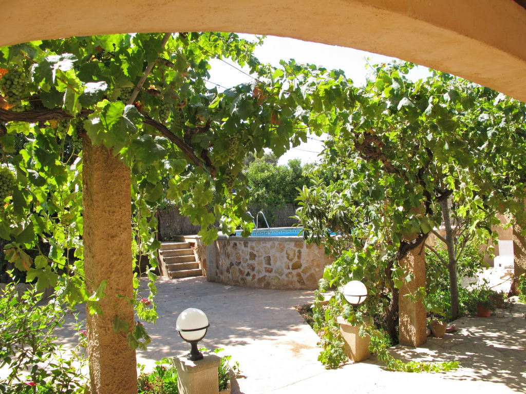 Maison de vacances Jacoba (PPE130) (106784), Portopetro, Majorque, Iles Baléares, Espagne, image 21