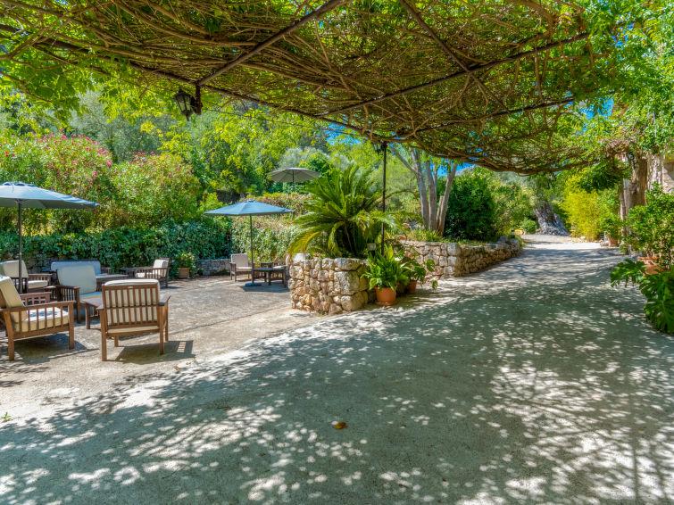 Photo of Varitx Paradise